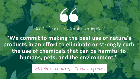 We commit to making the best use of nature's products in an effort to eliminate or strongly curb the use of chemicals that can be harmful to humans, pets, and the environment. - Josh Kohlbeck, Head Grower at Chippewa Valley Growers