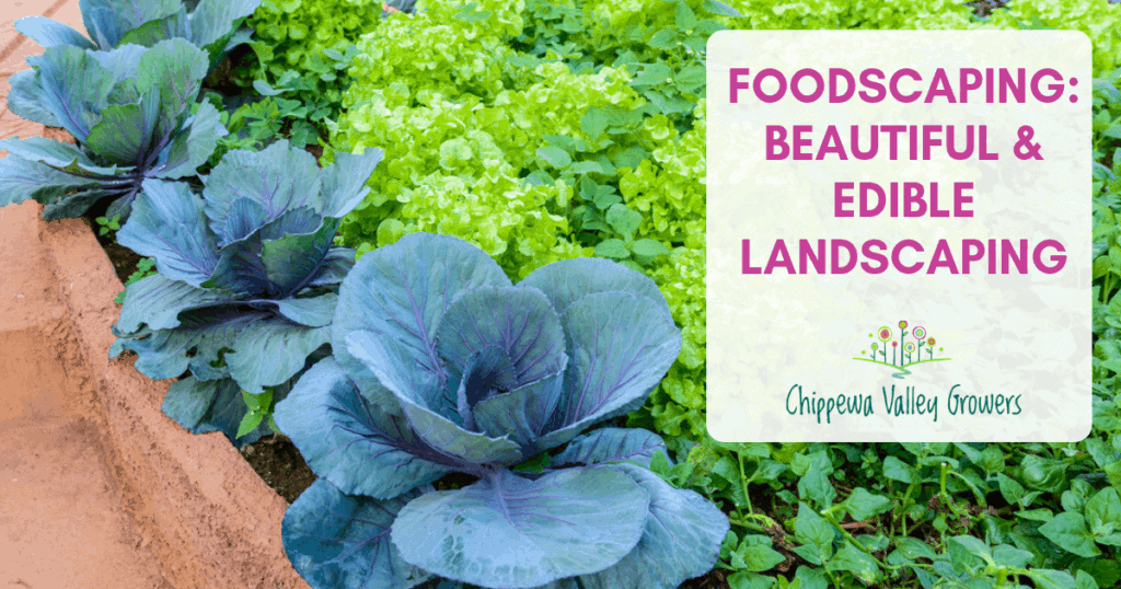 Foodscaping: Edible Landscaping - Chippewa Valley Growers