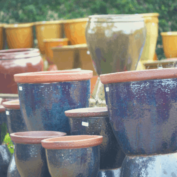 3 Container Planting Tips