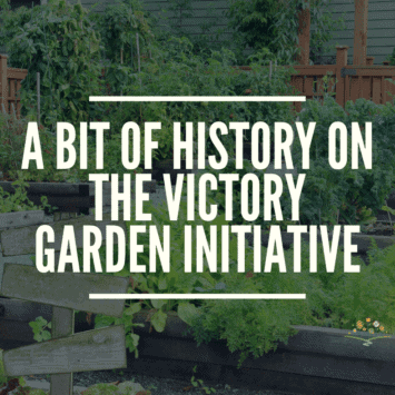 A Bit of History on the Victory Garden Initiative
