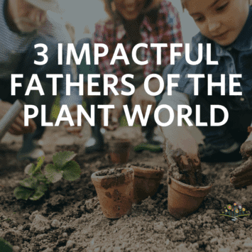 3 Impactful Fathers of the Plant World