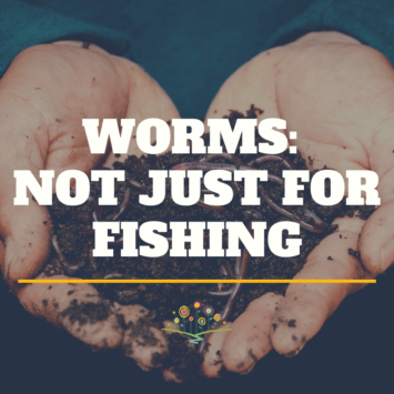 Worms: Not Just for Fishing