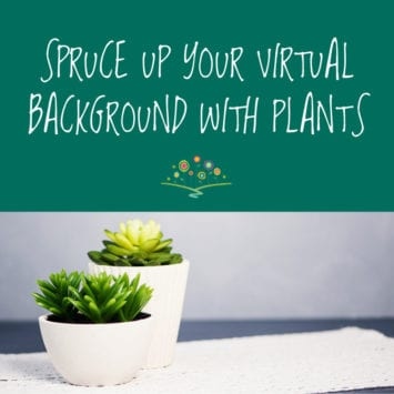 Spruce Up Your Virtual Background with Plants